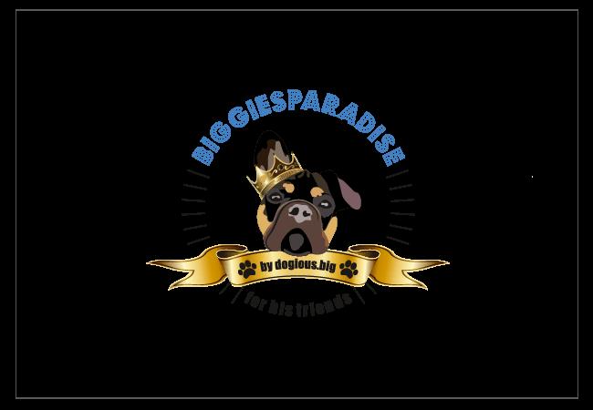 biggiesparadise Logo Design